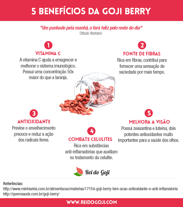 5-beneficios-goji-berry-infografico